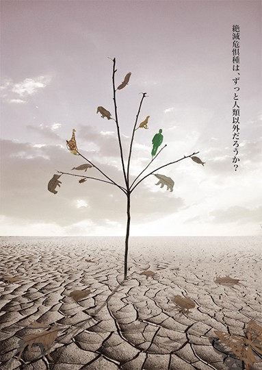 Dead leaves - Masahiro Kito - Japan