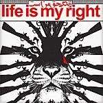 lifeismyright1-i