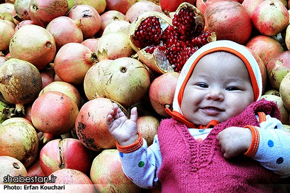 Harvesting-Pomegranate-in-Sangan-Village-Iran-6469
