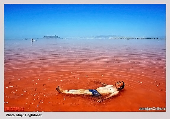 Mud-bathing-in-Lake-Urmia-Iran-3016