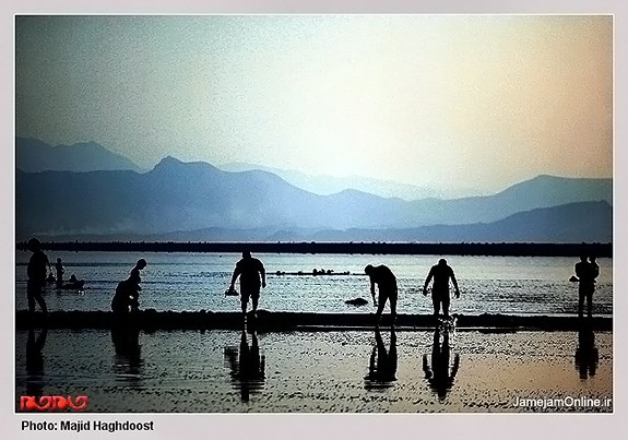 Mud-bathing-in-Lake-Urmia-Iran-3025